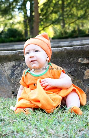 Halloween Mini session pumpkin raleigh newborn portrait