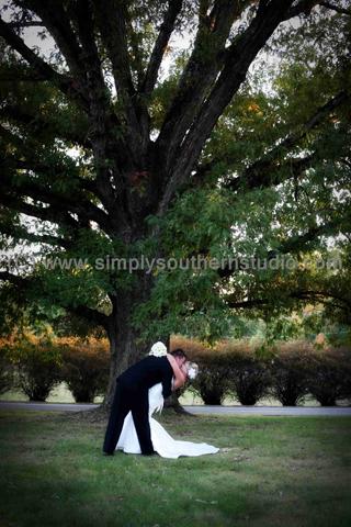 Bride Groom Dip Kiss Tree
